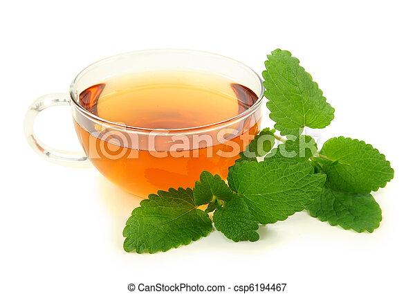 Lemon balm tea - csp6194467