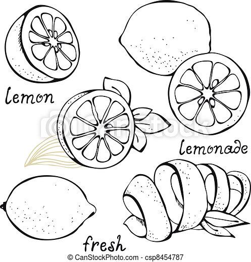 Lemon citrus vector set - csp8454787