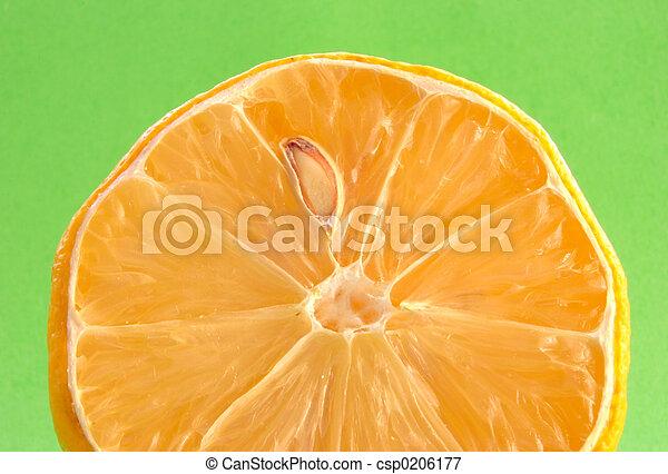 lemon details #2 - csp0206177