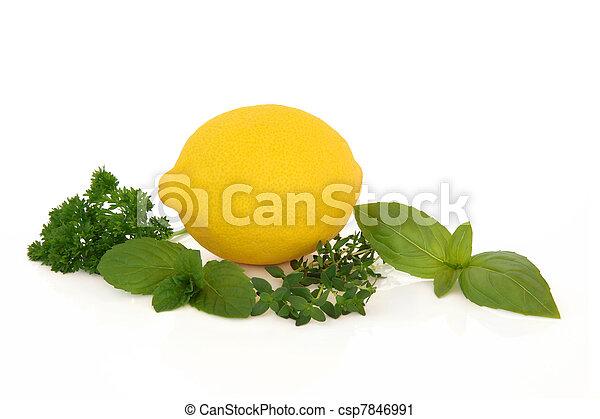 Lemon Fruit and Herbs - csp7846991