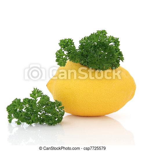 Lemon Fruit and Parsley Herb - csp7725579
