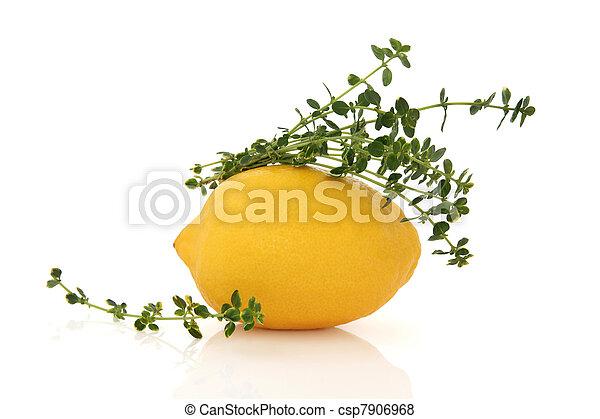 Lemon Fruit and Thyme Herb - csp7906968