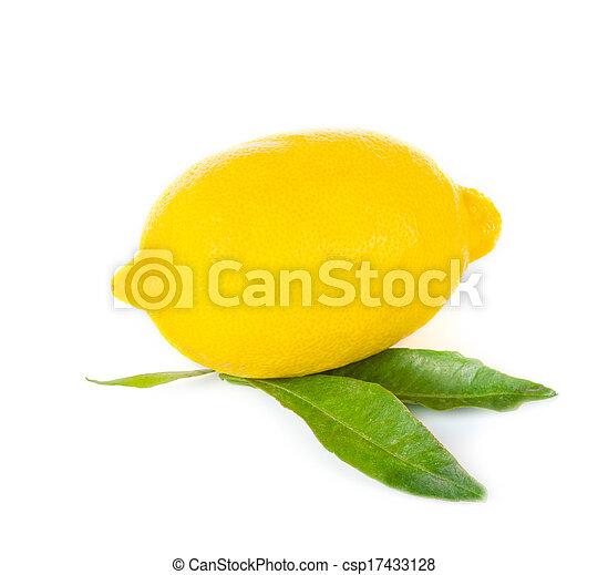 Lemon fruit - csp17433128