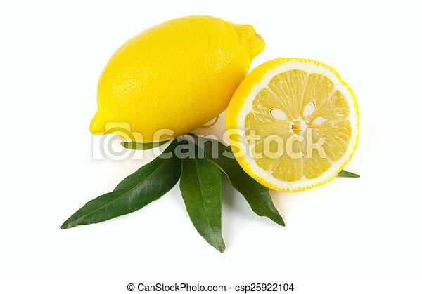 Lemon fruit - csp25922104