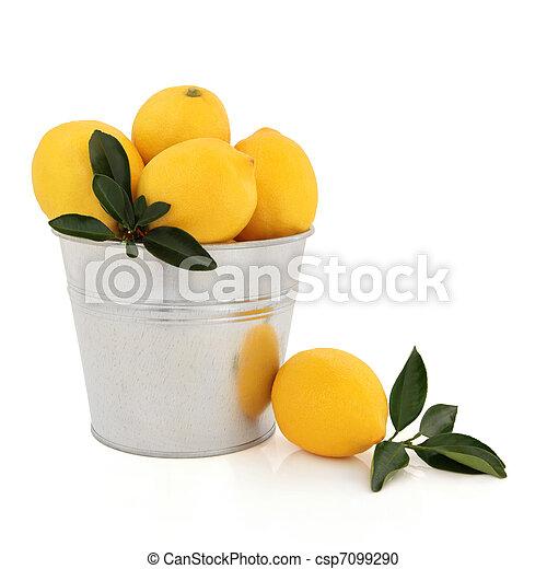 Lemon Fruit - csp7099290