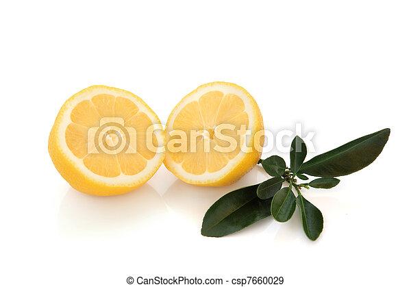 Lemon Halves - csp7660029
