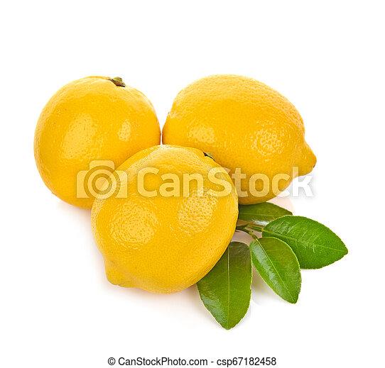 Lemon isolated on white background - csp67182458