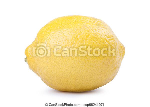 Lemon isolated on white background. - csp66241971