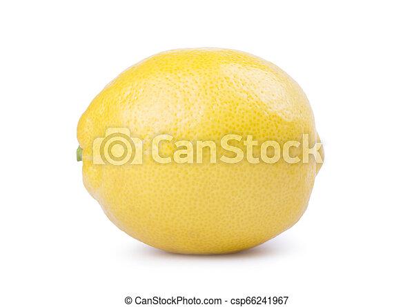 Lemon isolated on white background. - csp66241967