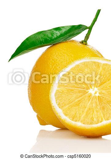 lemon - csp5160020