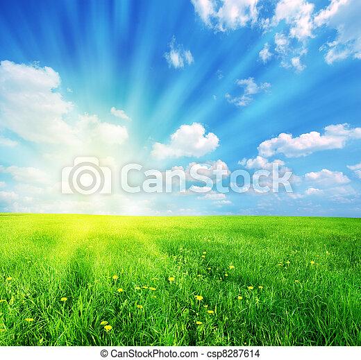 lente, zonnig, landscape - csp8287614