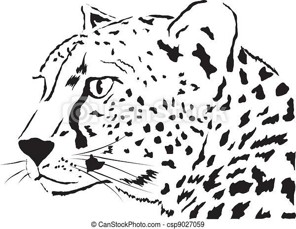 Leopard - csp9027059