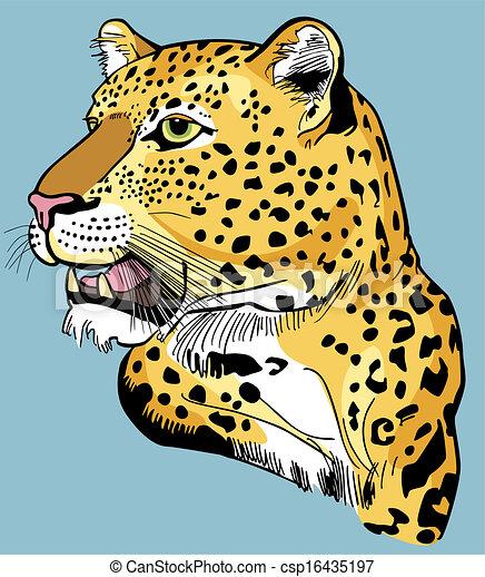 Leopard Head - csp16435197