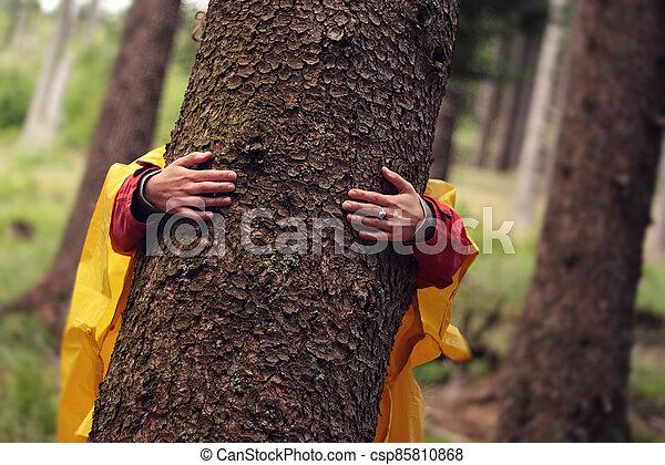 les, strom, manželka, ruce, kufr, -, objetí - csp85810868