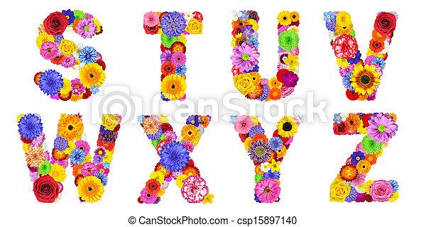 letras, y, x, alfabeto, w, -, isolado, u, t, s, floral, branca, z, v - csp15897140
