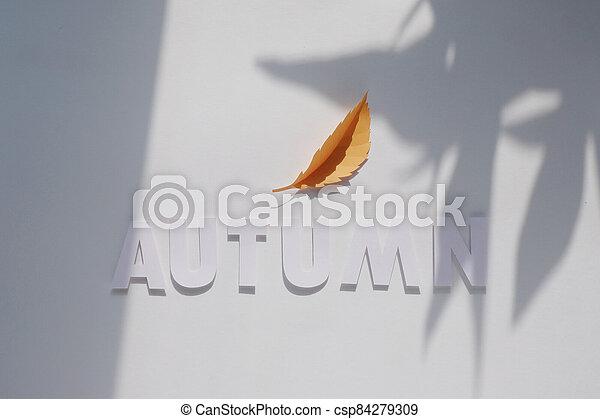 letter autumn cut from paper. Monochromatic concept - csp84279309