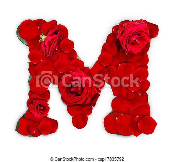 Letter M Made From Red Roses And Petals Isolated On A White Background Canstock Arte, siluetas y una taza de café. https www canstockphoto com letter m 17835792 html