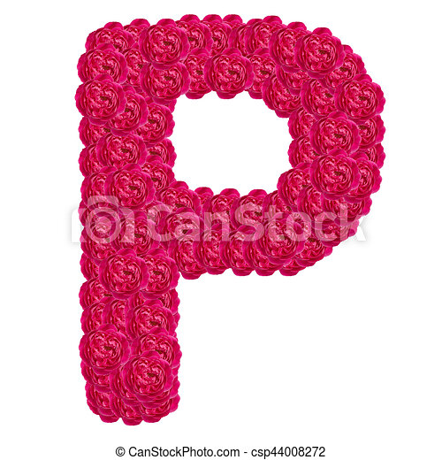 Letter P Alphabet With Damask Rose Abc Concept Type As Logo Isolated On White Background