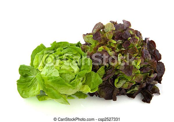 Lettuce assortment - csp2527331