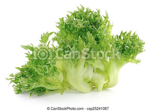 lettuce on white background - csp25241087