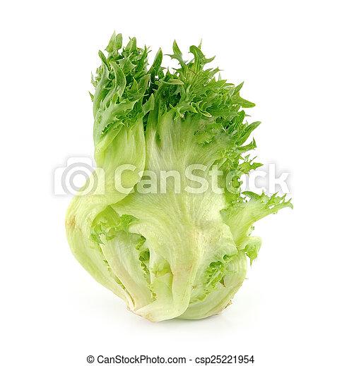 lettuce on white background - csp25221954