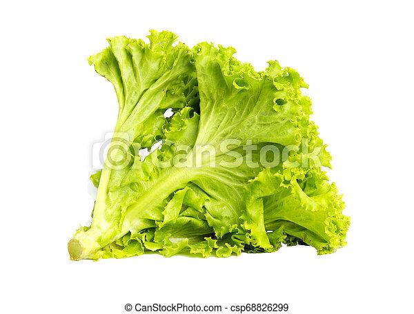 Lettuce on white background - csp68826299
