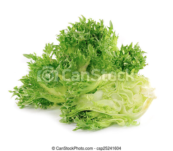 lettuce on white background - csp25241604