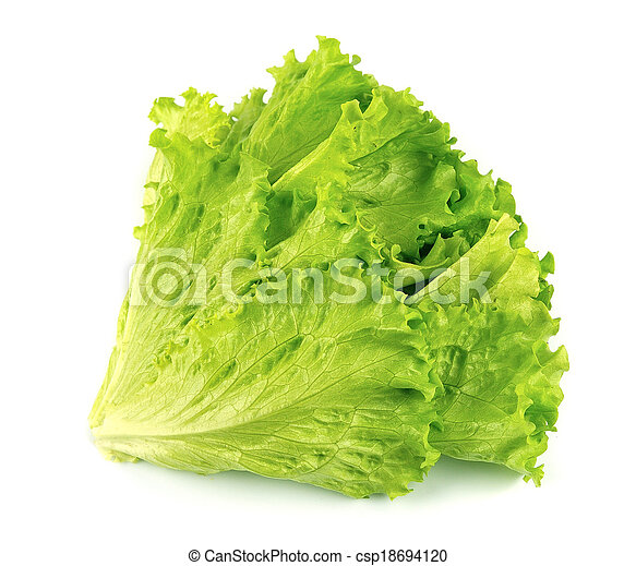 Lettuce salad isolated - csp18694120