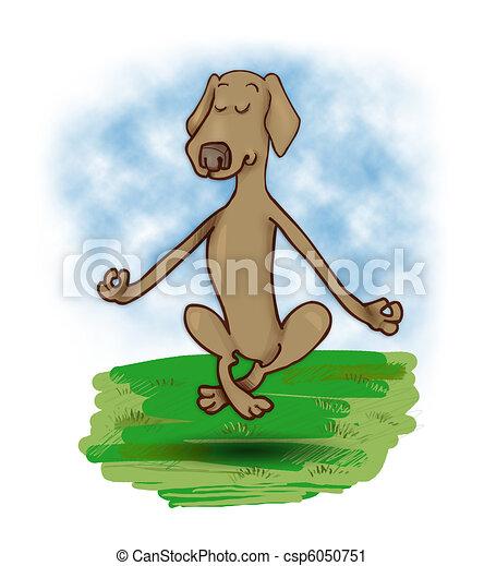 levitating dog - csp6050751