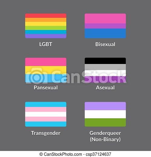 Non binary homosexual