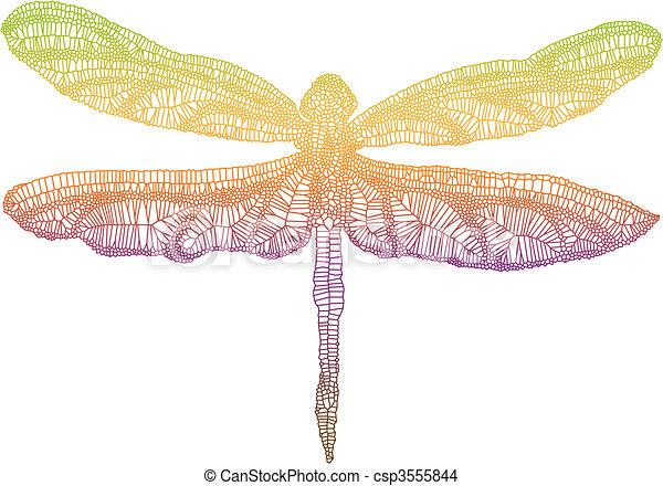 libellula, colorito - csp3555844
