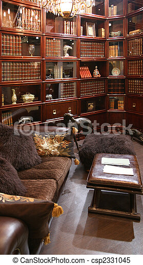 library interior in usual furniture shop - csp2331045