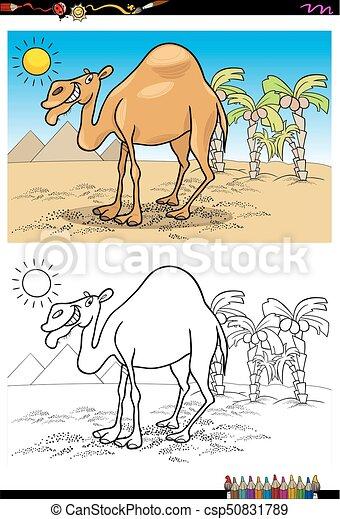 libro, deserto, coloritura, cartone animato, cammello - csp50831789