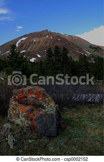 Lichen Boulder - csp0002152