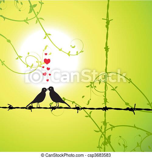 liebe, vögel, zweig, küssende  - csp3683583