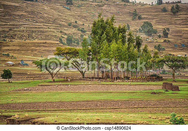Life in the countryside - csp14890624