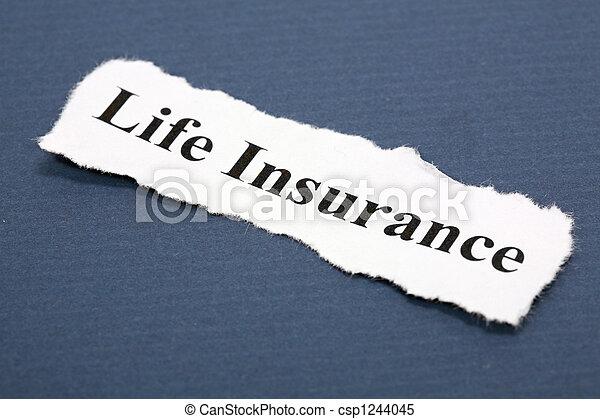 Life Insurance - csp1244045