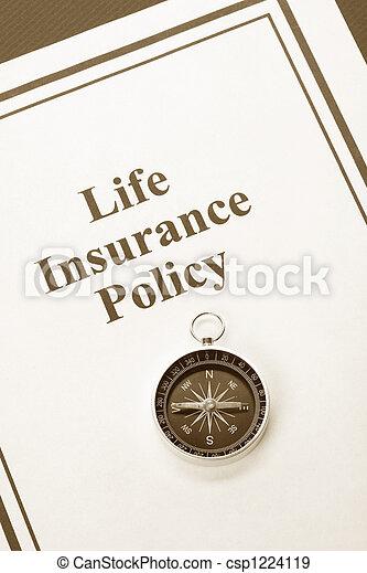 Life Insurance - csp1224119