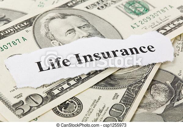 Life Insurance - csp1255973