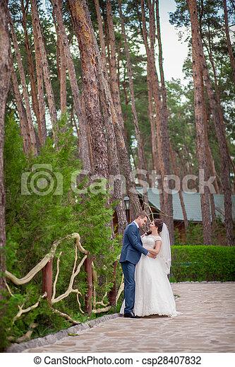 liget, esküvő - csp28407832