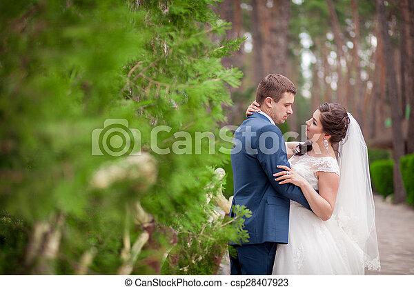 liget, esküvő - csp28407923