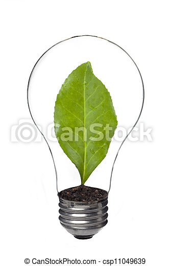 light bulb with leaf inside - csp11049639