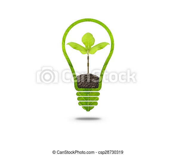 Light Bulb with sprout inside - csp28730319