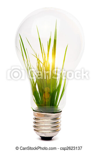 lightbulb with plant growing inside - csp2623137