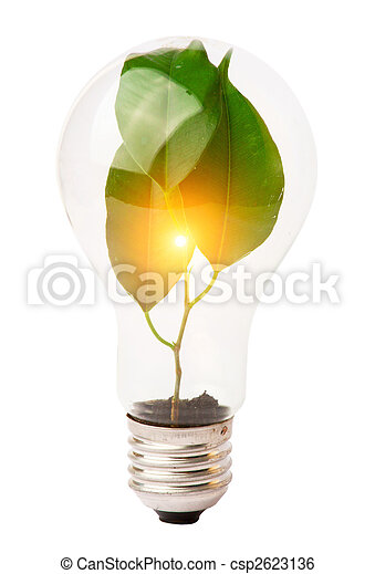lightbulb with plant growing inside - csp2623136