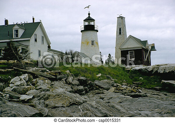 Lighthouse and gull - csp0015331