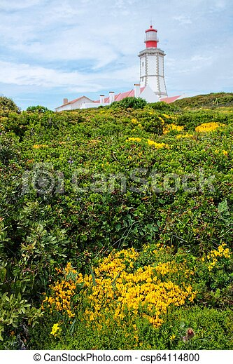 Lighthouse on top of cliff and surrounded by vegetation at Cape Espichel - csp64114800
