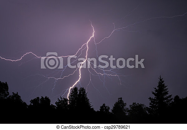 Lightning Silhouettes Trees - csp29789621
