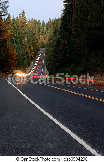 Lightstreaks on Forest Highway - csp0994296