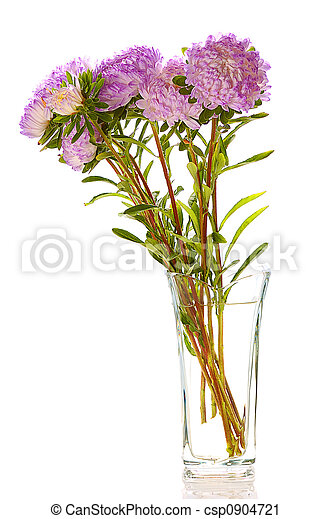 lilac asters in glass vase - csp0904721